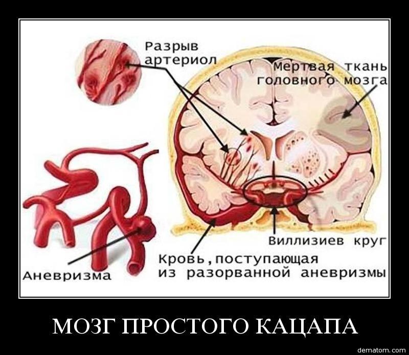 Невротические расстройства и выпадение волос